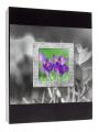 Album 10x15/200 FRAME - VERZE A